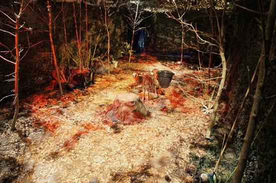 Forest zone (Sowerby\'s installation)
